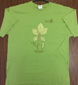 VBMA T-Shirt: Light Green - Product Image